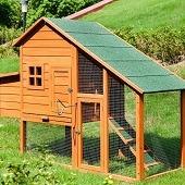 rabbit hutch preloved