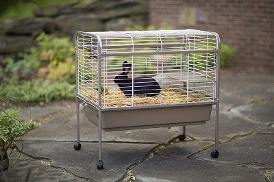 Extra Large Indoor Rabbit Bunny Cages