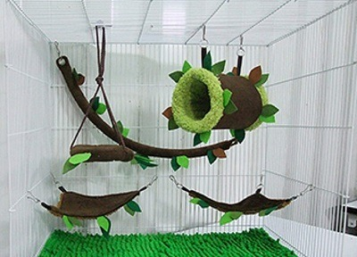 sugar glider cages for sale